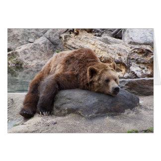 Oso grizzly que descansa sobre roca felicitación