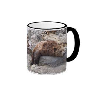 Oso grizzly que descansa sobre roca tazas de café