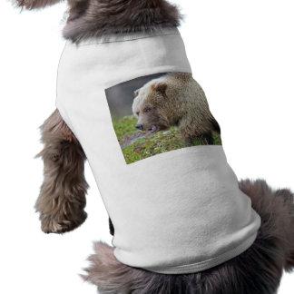 Oso grizzly playera sin mangas para perro
