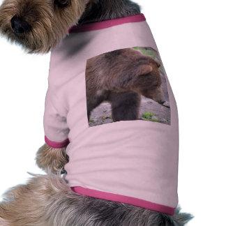 Oso grizzly camiseta con mangas para perro