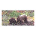 Oso grizzly y Cub de Momma Tarjetas Con Fotos Personalizadas
