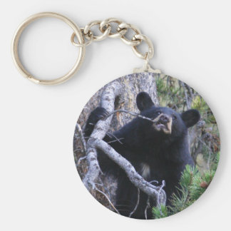 oso llavero redondo tipo pin