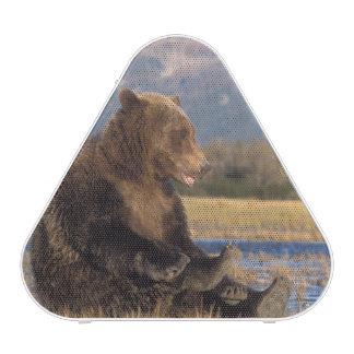 oso marrón, arctos del Ursus, oso grizzly, Ursus 2 Altavoz Bluetooth