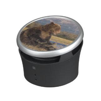 oso marrón, arctos del Ursus, oso grizzly, Ursus 2 Altavoz Con Bluetooth