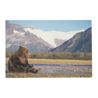 oso marrón, arctos del Ursus, oso grizzly, Ursus 2 Salvamanteles