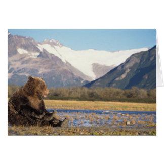 oso marrón, arctos del Ursus, oso grizzly, Ursus 2 Tarjeta De Felicitación