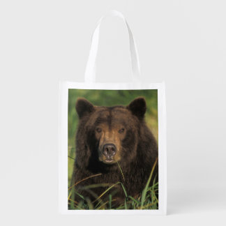 oso marrón, arctos del Ursus, oso grizzly, Ursus 9 Bolsa Reutilizable