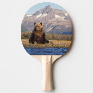 oso marrón arctos del Ursus oso grizzly Ursus