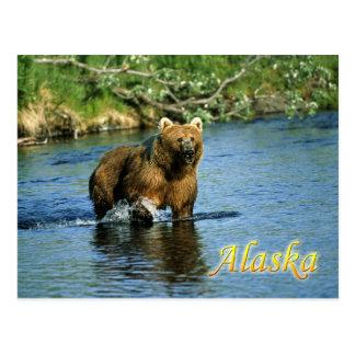 Oso marrón del Kodiak, Alaska Postal