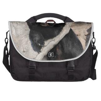 Oso negro asiático bolsas para portatil