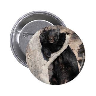 Oso negro asiático pin redondo de 2 pulgadas
