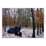 Oso negro Cub de la escena del invierno en las mad Felicitaciones