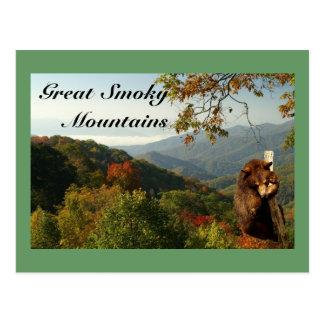 Oso negro de la montaña ahumada tarjetas postales