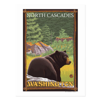 Oso negro en el bosque - cascadas del norte, postales