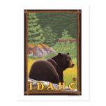 Oso negro en el bosque - Idaho Tarjetas Postales