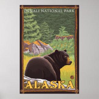 Oso negro en el bosque - parque nacional de Denali Poster