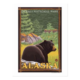 Oso negro en el bosque - parque nacional de postales