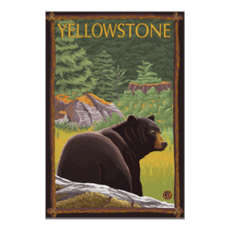 Oso negro en el bosque - parque nacional de Yellow Poster