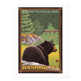 Oso negro en el bosque - parque nacional olímpico, postales