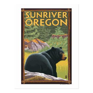 Oso negro en el bosque - río de Sun, Oregon Tarjetas Postales