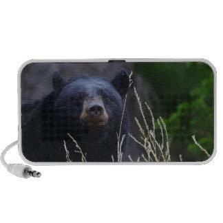 oso negro en la hierba iPhone altavoces