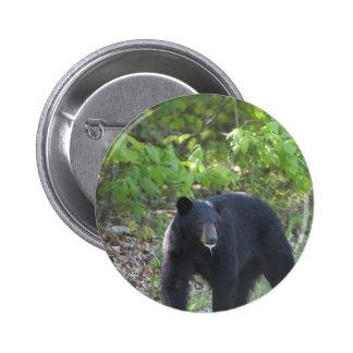 oso negro pin redondo de 2 pulgadas