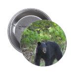 oso negro pins