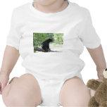 oso negro que se sienta en árbol camisetas