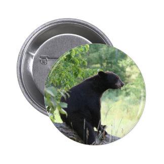 oso negro que se sienta en árbol pin redondo de 2 pulgadas