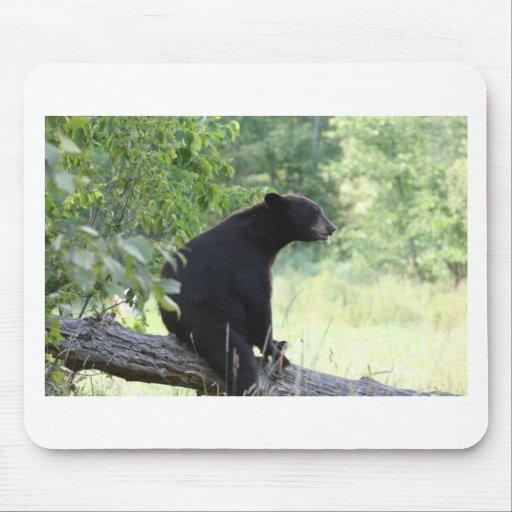 oso negro que se sienta en árbol alfombrilla de ratón