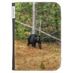 Oso negro salvaje y arte de la foto del bosque del