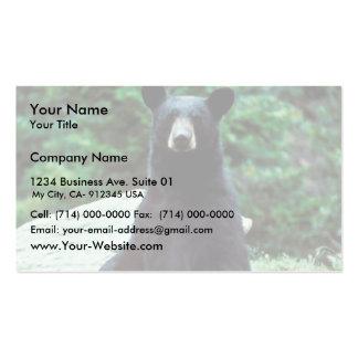 Oso negro tarjetas de visita