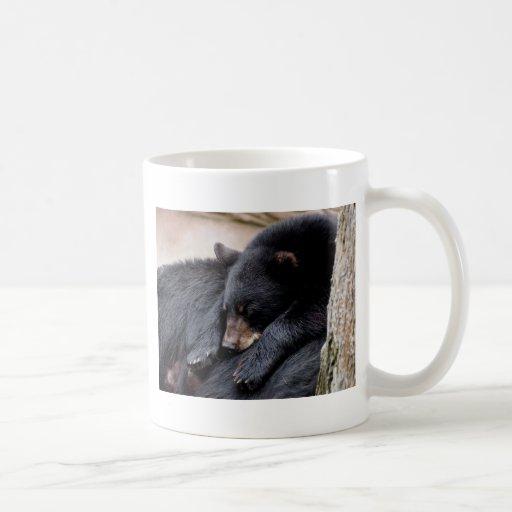 oso negro taza de café
