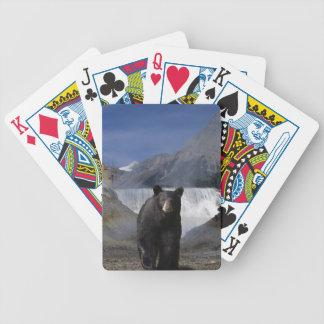 Oso negro y fauna de la cascada de las montañas ro baraja de cartas