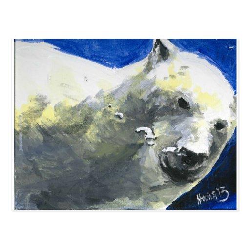 oso polar 4 postal