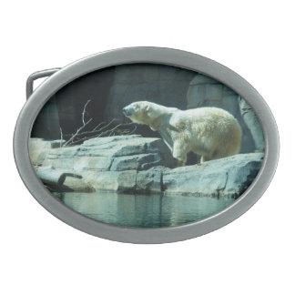 Oso polar: Berlín Hebilla Cinturón Oval