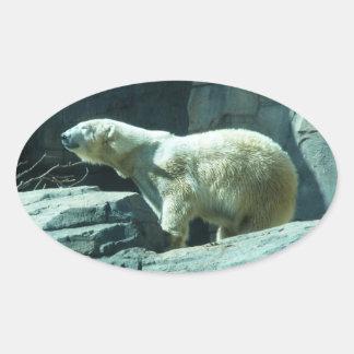 Oso polar: Berlín Pegatina Ovalada