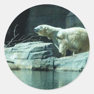 Oso polar: Berlín Pegatina Redonda
