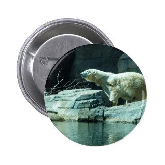 Oso polar: Berlín Pin Redondo De 2 Pulgadas