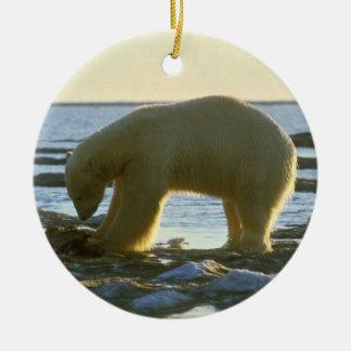 Oso polar blanco adorno navideño redondo de cerámica