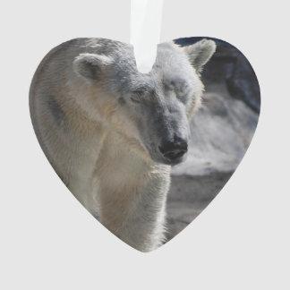 Oso polar blanco lindo
