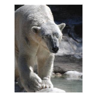 Oso polar blanco lindo membrete a diseño