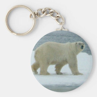 Oso polar blanco llavero redondo tipo pin