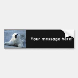 Oso polar pegatina de parachoque