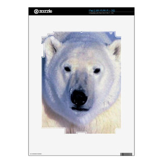 Oso polar calcomanía para el iPad 2