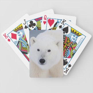 Oso polar cartas de juego
