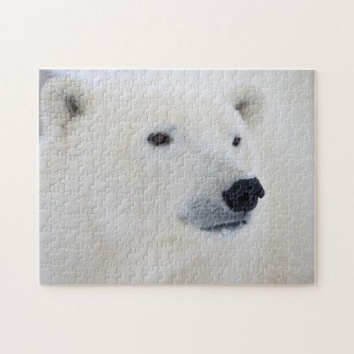 Oso polar Churchill Rompecabezas Con Fotos