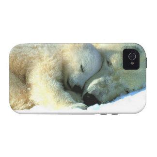 Oso polar con ambiente de la casamata del iPhone 4 Case-Mate iPhone 4 Carcasa