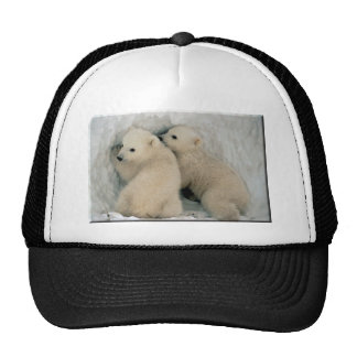 Oso polar Cubs Gorros Bordados