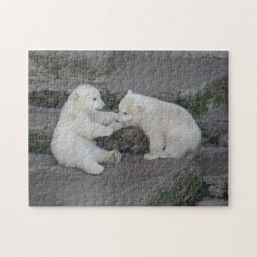 Oso polar Cubs Puzzles Con Fotos